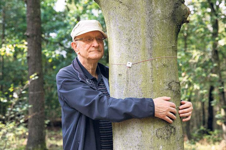 Harald Herrig (78) umarmt eine Buche. Am Fuße dieses Baumes möchte er seine letzte Ruhestätte finden,soll die Urne mit seiner Asche vergraben werden.
