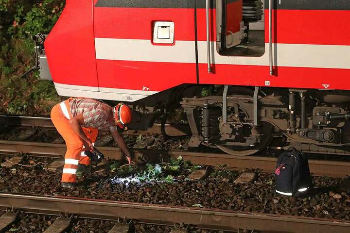 Der Zug war mit mehreren Ästen und anderen Baumteilen kollidiert, welche von der Feuerwehr beseitigt werden mussten.