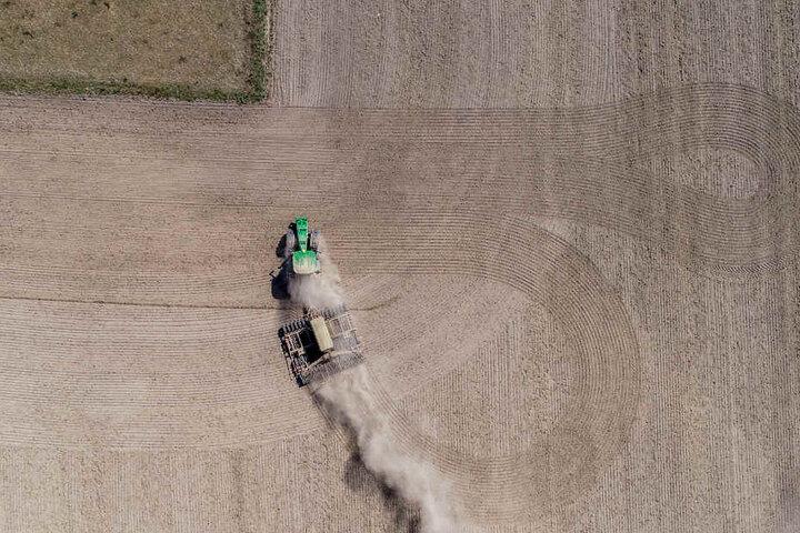 Die Hilfen stehen Landwirten zu, die eine Drittel seiner Jahreserzeugnisse verloren hat.