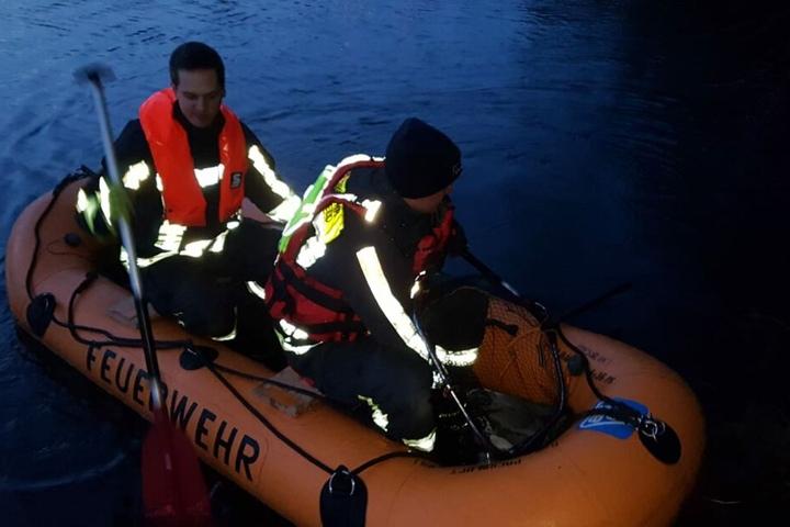 Per Boot gelang die Rettung des Tieres.
