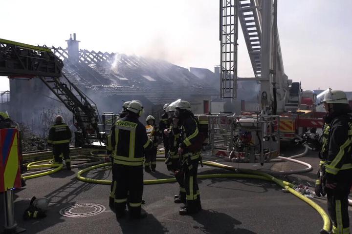 Feuerwehrleute stehen vor den völlig zerstörten Häusern.