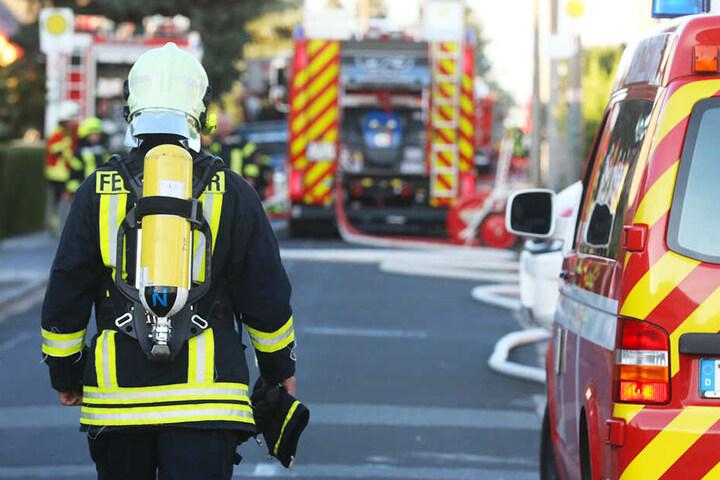 Mit einem Großaufgebot konnte die Feuerwehr die Siedlung retten.