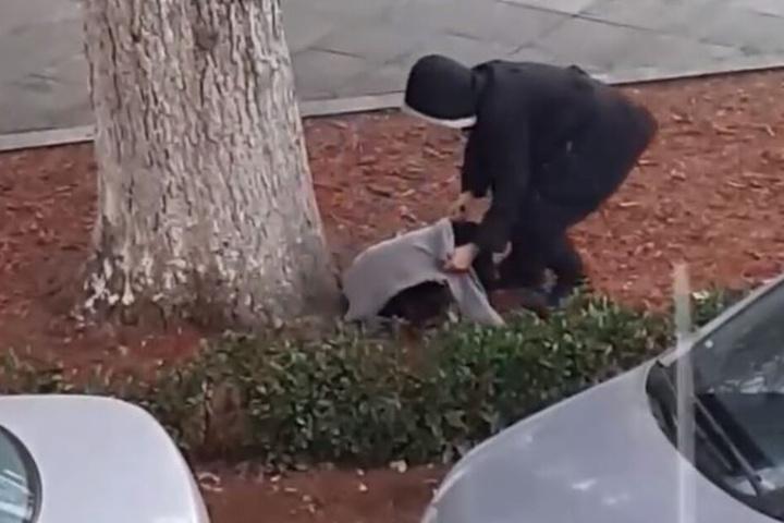 Die Frau deckte den Hund liebevoll zu.