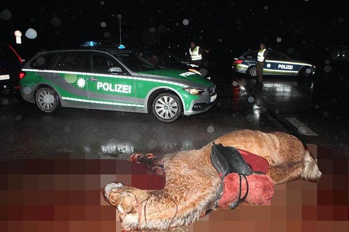 Das Pferd hatte musste vor Ort von seinen Leiden erlöst werden. Die Reiterinnen kamen schwer verletzt ins Krankenhaus.