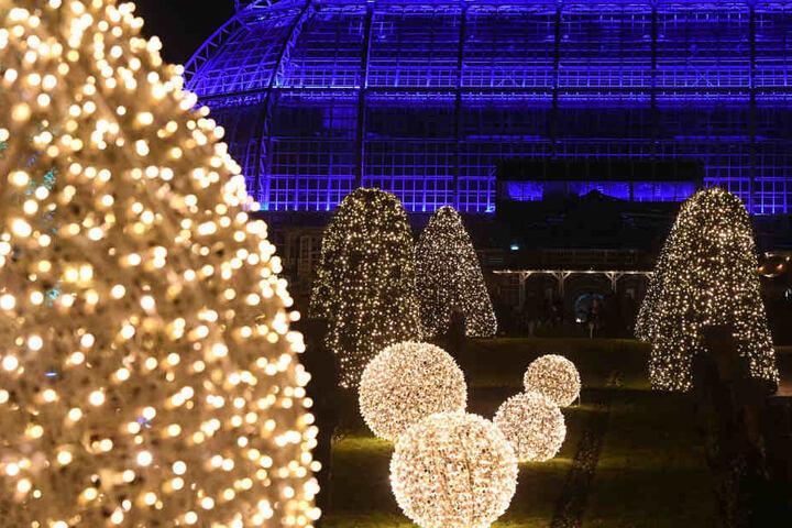 Die leuchtende Landschaft ist in dieser Saison letztmalig am Neujahrstag geöffnet.