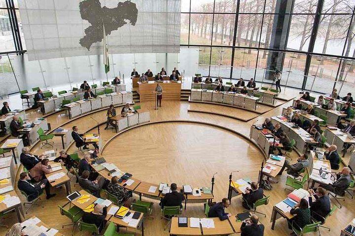Im sächsischen Landtag arbeiten die Grünen in Umweltfragen mit der schwarz-roten Regierungskoalition zusammen.