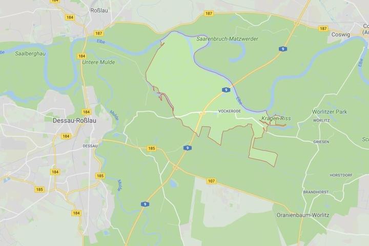 Vockerode befindet sich in Sachsen-Anhalt zwischen Dessau-Roßlau im Westen und Lutherstadt Wittenberg im Osten.