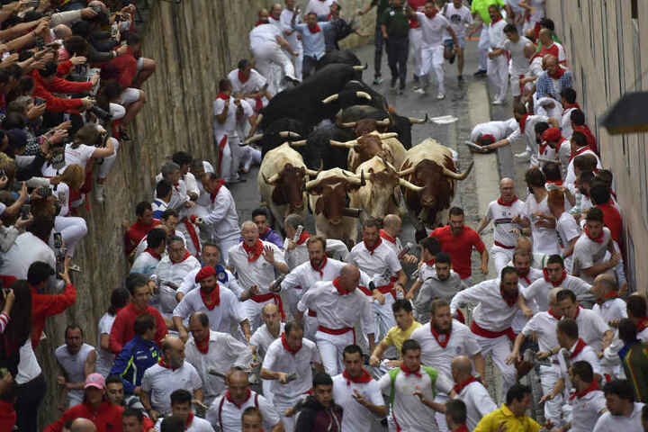 Bis zum 14. Juli noch werden täglich Kampfbullen und Leitochsen von Hunderten von Männern und wenigen Frauen, für die Stierkämpfe am Abend, durch die Gassen in die Arena gejagt.