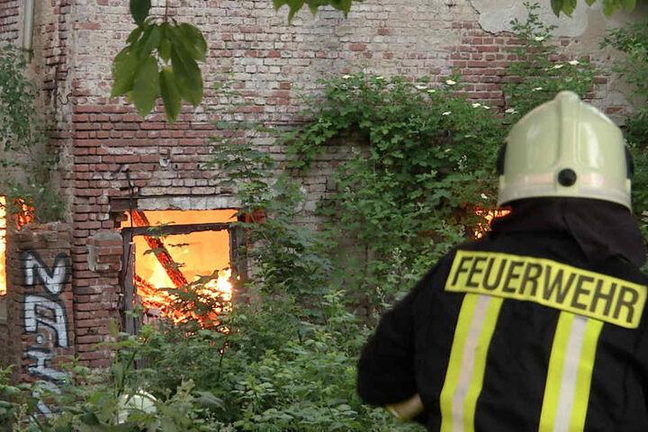 Ein Stall des verlassenen Guts brannte komplett nieder.