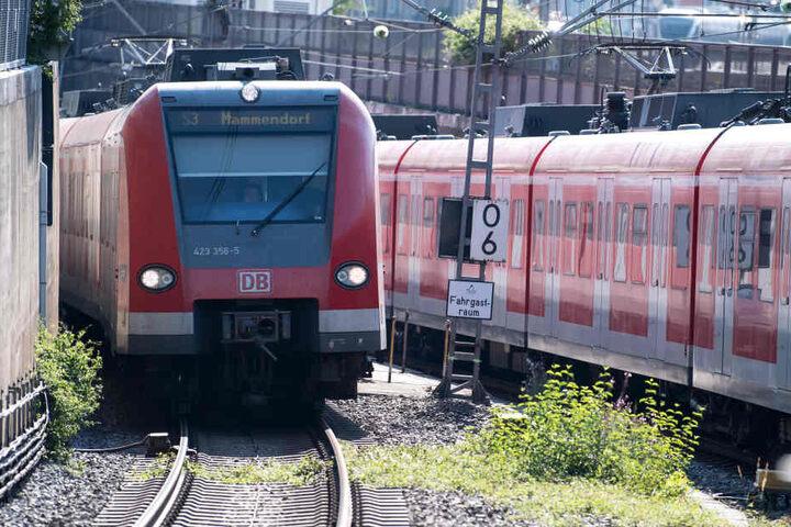 Die S-Bahn musste erstmal warten, bis der Welpe und die Besitzer wieder in Sicherheit waren. (Archivbild)
