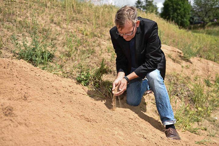 Die Folgen der Dürre sind deutlich sichtbar: Gewässer-Experte Harald Kroll (58) im ausgetrockneten Graupaer Bach in Pillnitz.