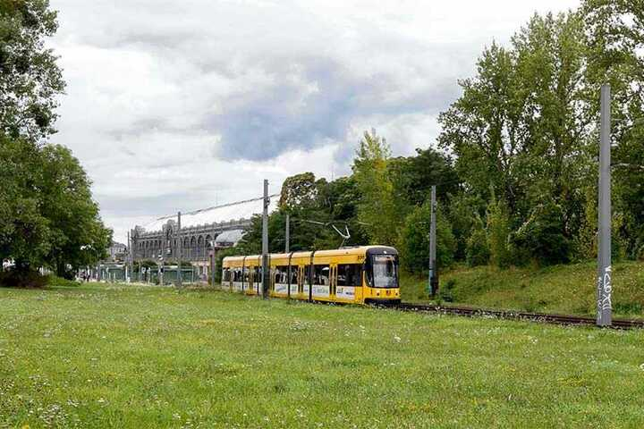 Auf der Fläche hinter den Straßenbahn-Gleisen soll das Fernbus-Terminal gebaut werden.