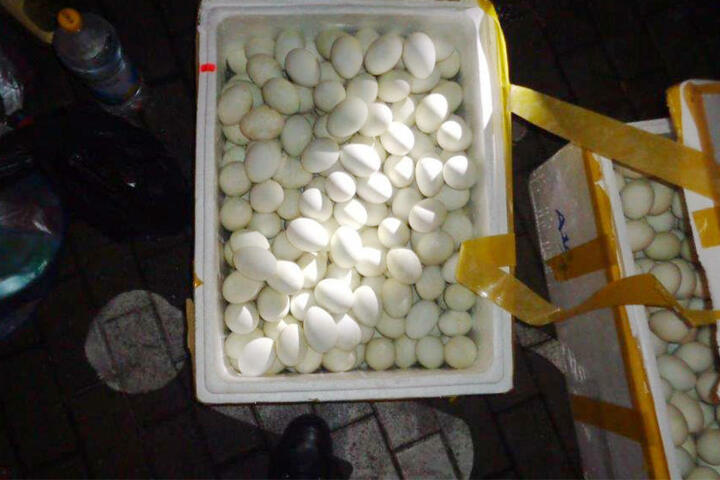 Das Problem: Die Eier hatten weder Stempel noch Herkunftsbezeichnung.