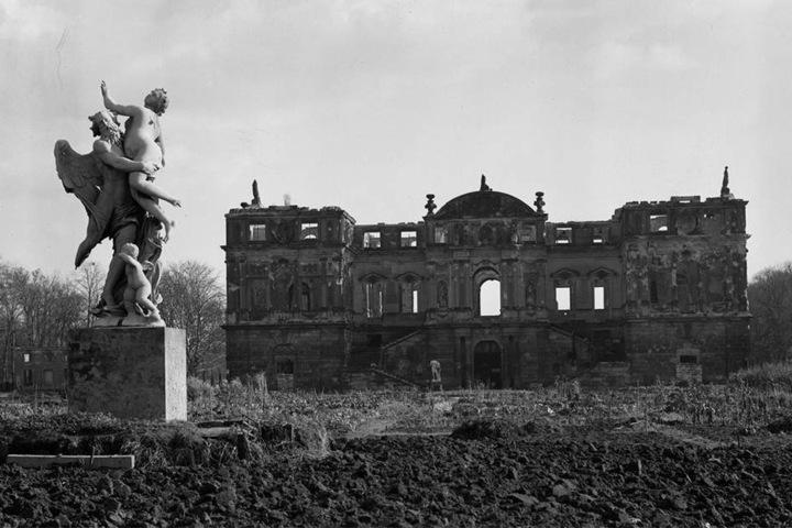Im Zweiten Weltkrieg wurden weite Teile des Großen Gartens zerstört, etliche Bäume verbrannten. Eine Bombe traf auch den Stamm der Splittereiche.
