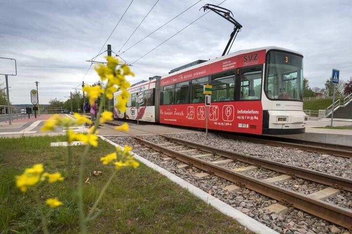 Streitpunkt Unkrautbekämpfung: soll das in Verruf geratene Glyphoast weiter in Zwickau eingesetzt werden, wie zum Beispiel zum freihalten des Gleisbereiches der Straßenbahn, oder nicht?