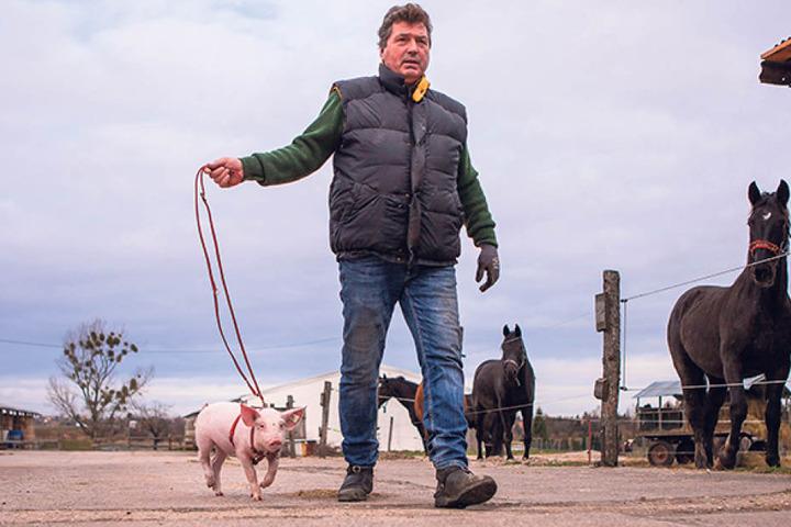Liebevoll nimmt Dietmar Telligmann (59) auf dem Gelände seiner Filmtierschule in Eilenburg die süße Cinderella auf den Arm.