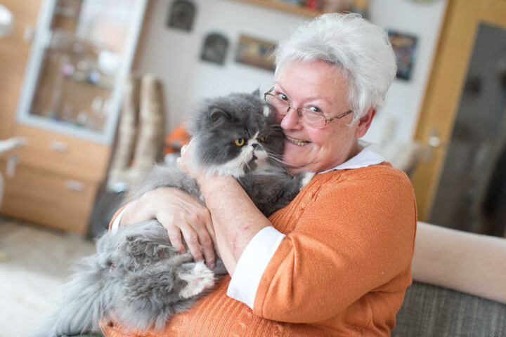 Derzeit kuschelt sie zu Hause nämlich nur mit Perser-Kater Charly (5).