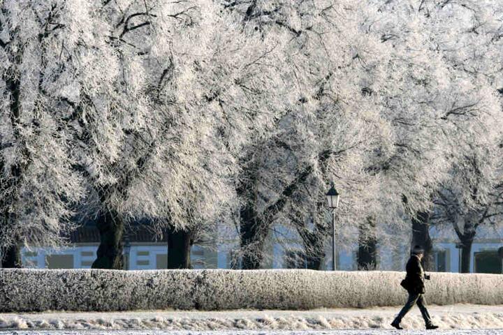 Winter Zauber In Munchen Die Schonsten Routen Fur Euren