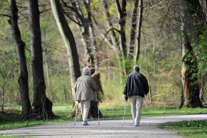 Zwei ältere Menschen gehen in München auf einem Weg im Englischen Garten mit ihren Nordic Walking-Stöcken.