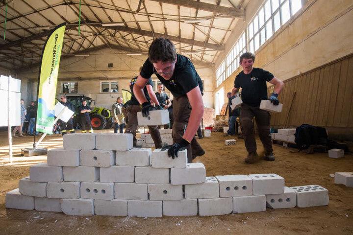 Stein auf Stein. Das luxemburgische Team muss eine möglichst gerade Mauer bauen. Zu den 18 Disziplinen der Agrarolympiade gehört auch Mauerbau.