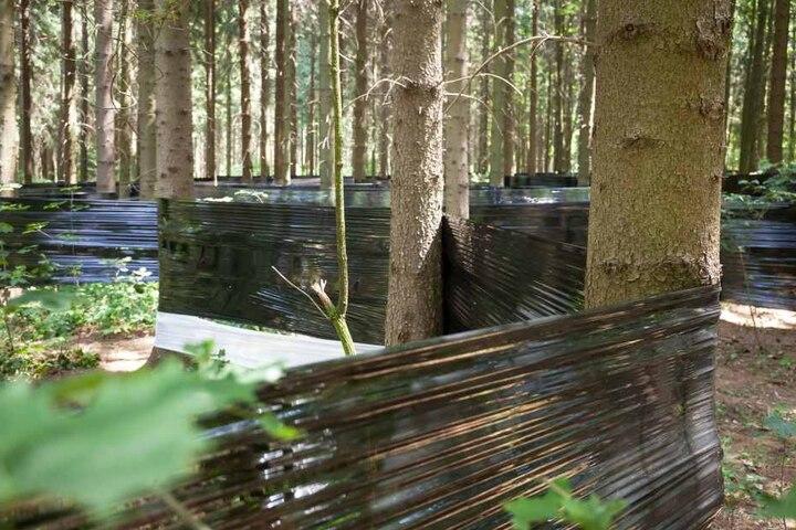 So sah das Labyrinth vor seiner Zerstörung durch die Vandalen aus.