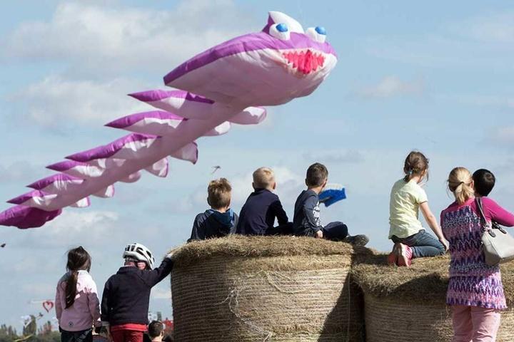 Ein Luftungetüm beim 6. Festival der Riesendrachen.
