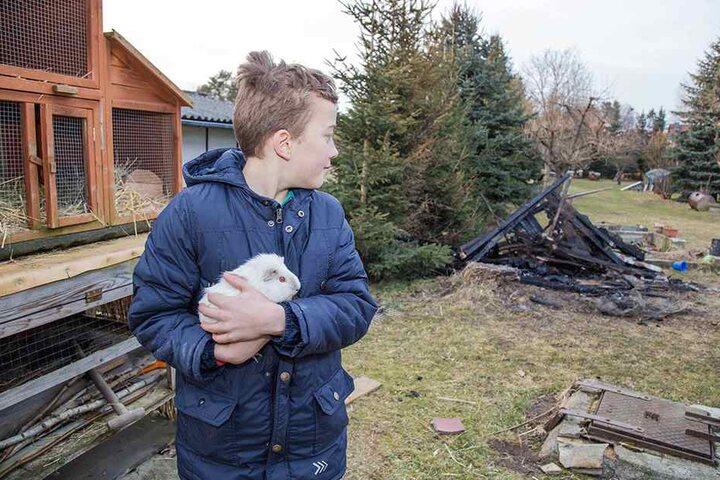 Anitas Enkel Nils (9) ist froh, dass wenigstens seinen geliebten Kaninchen nichts passiert ist.