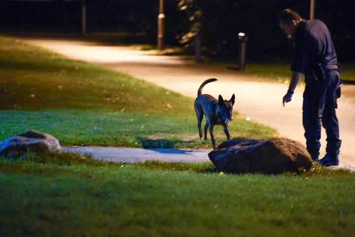 Mit einem Spürhund sucht die Polizei die Umgebung des Tatortes ab.
