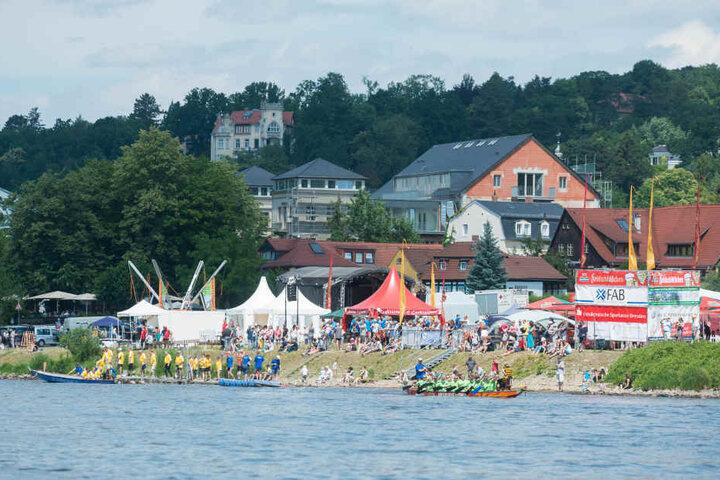 Auf der Elbe paddelten die Mannschaften beim Drachenboot-Rennen um die Wette.