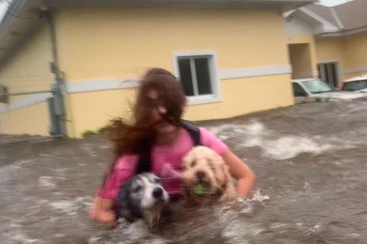 Eine Frau watet mit ihren Hunden durch hüfthohes Wasser auf einer überfluteten Straße.
