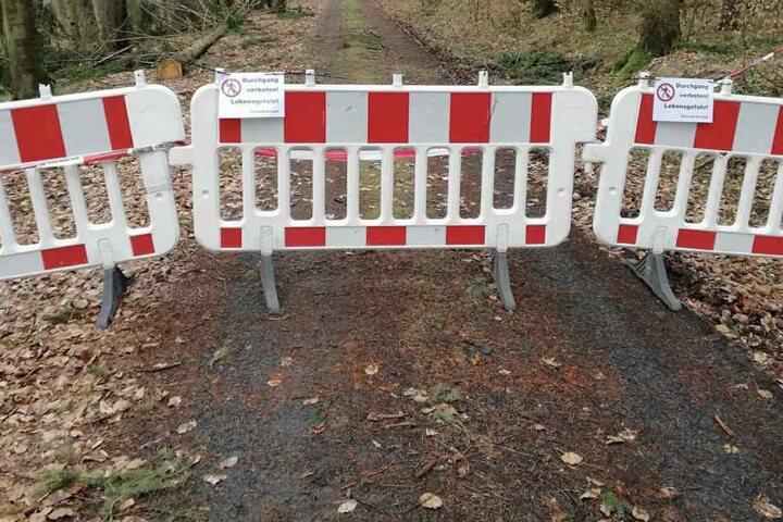 Lebensgefahr! Fußgängern wurde das Betreten des Waldweges verwehrt.