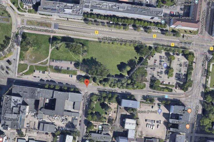 Die Leiche wurde zwischen Walther-Rathenau-Straße und Listemannstraße gefunden.