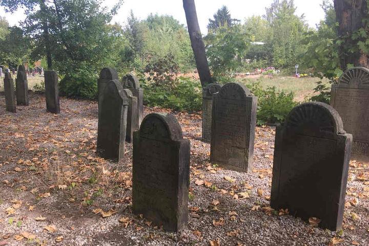 Unter anderem sollen weitere Flächen für neue Gräber erschlossen werden. Grund: Durch den demografischen Wandel gibt es auch in der Israelitischen Gemeinde immer mehr Alte.
