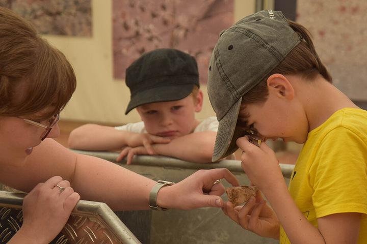 Kleine Fossilienjäger, Grabungshelfer oder Präparatoren werden: Das können Kids bei der Außenstelle des Naturkundemuseums.