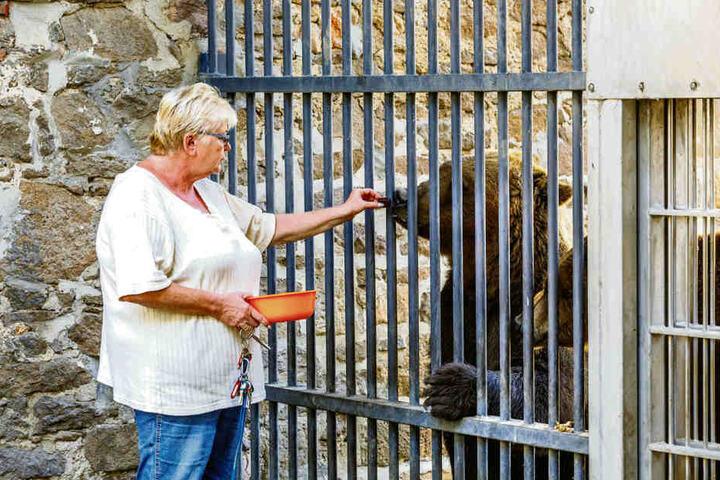 """Angela Mierau füttert die Jungbären Benno und Bea. Die Bärin Jette bekommt altersgerechte, manchmal vorgekochte Kost. """"Sie hat zwar noch alle Zähne, trotzdem fällt ihr das Beißen manchmal schwer"""", sagt die Pflegerin."""