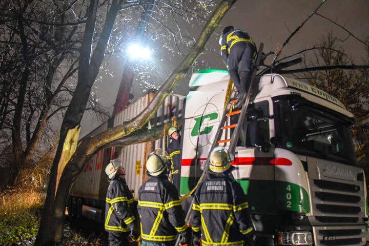 Die Feuerwehr hatte mit dem umgestürzten Baum auf einen Lastwagen alle Hände voll zu tun.
