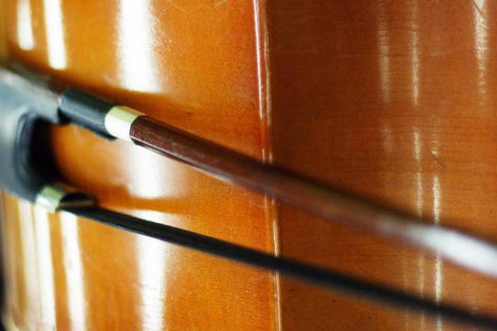 Der Kontrabass-Bogen hatte einen Wert von 4600 Euro (Symbolbild)
