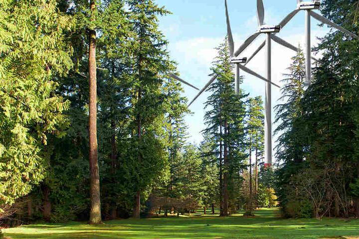 Stehen in sächsischen Wäldern bald Windräder? (Bildmontage)