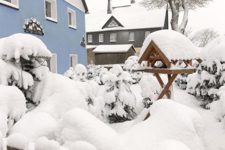 Kühnhaide versinkt in den Schneemassen. Bis zu 40 Zentimeter Neuschnee sind hier in den vergangenen Tagen gefallen.