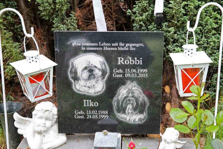 Spezielle Friedhöfe für Tiere gibt es bereits im Hamburger Umland, gemeinsame Gräber mit Menschen sind bisher nicht erlaubt (Archivbild).