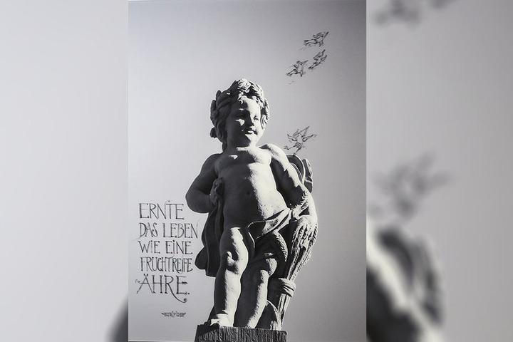 Axel Mayer fotografierte diesen Putto, Leo fügte Spruch und Vögel hinzu.