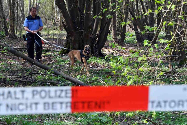 Ein Polizeibeamter mit Hund auf der Suche nach Spuren der vermissten Georgine Krüger im April 2018.