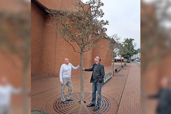 Techniker Friedrich (li.) und Direktor Nachtigäller (re.) wollen die toten Bäume ersetzen. Allerdings: Welcher Baum wächst gern mit so viel Steinboden herum?