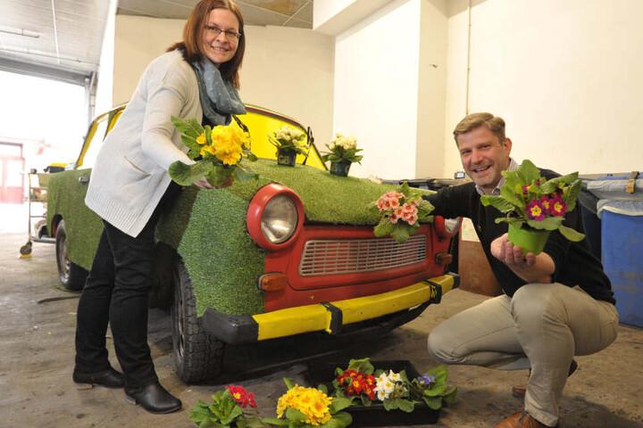 Zwickau blüht auf: Am Robert-Schumann-Denkmal grüßen bereits viele bunte  Blumen. Mitarbeiter des Garten- und Friedhofsamtes pflanzen bis nächste Woche  insgesamt 23.000 Blumen im Stadtgebiet.