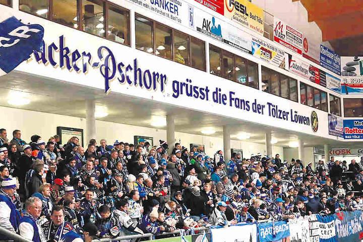 Blick auf die prall gefüllte Tribüne mit den Dresdner Fans, die im Sonderzug nach Bad Tölz gereist waren.