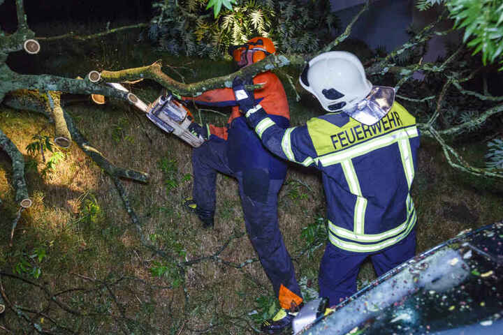 Feuerwehrmänner zersägen den auf das Auto gefallenen Baum.