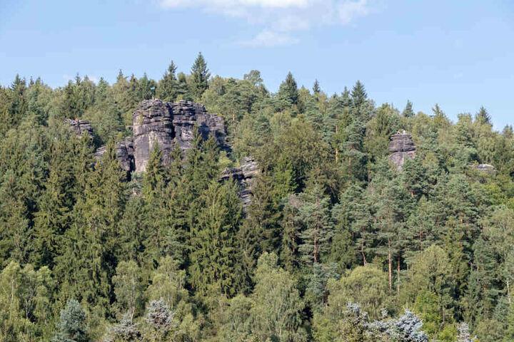 Ein Kletterer aus Dresden ist bei Rosenthal-Bielatal verunglückt.