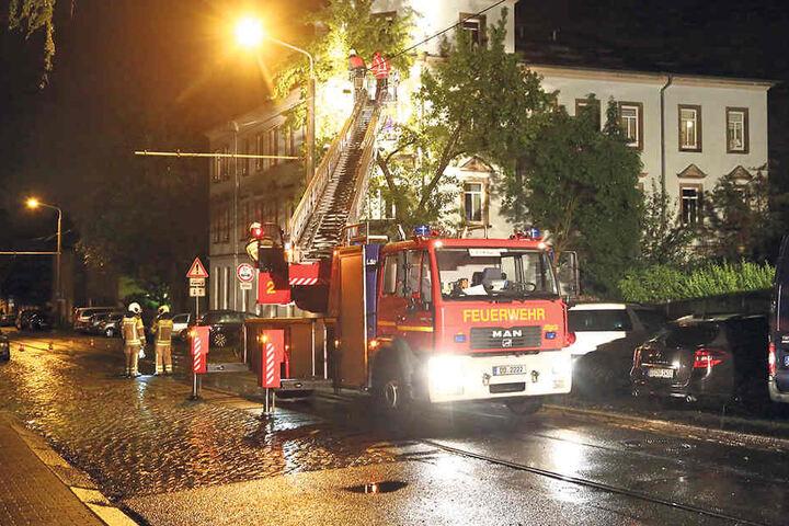 Wesentlich mehr Sturmeinsätze als im vergangenen Sommer hatte die Feuerwehr  2017. Die ganz großen Unwetter zogen jedoch an Dresden vorbei.