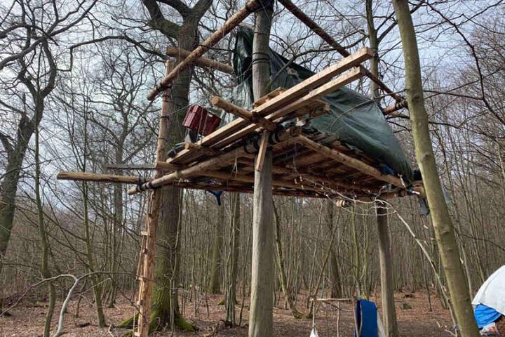 Die Bäume und Stämme könnten für Baumhütten der Aktivisten im Hambacher Wald verwendet worden sein.