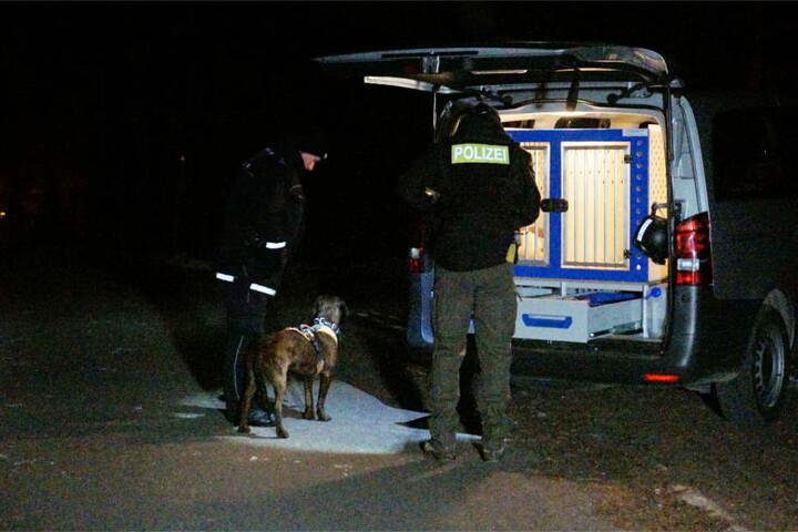 """Ein Suchhund (""""Man Trailer"""") verlor die Fährte an einem eingefassten Wasserdurchlass."""